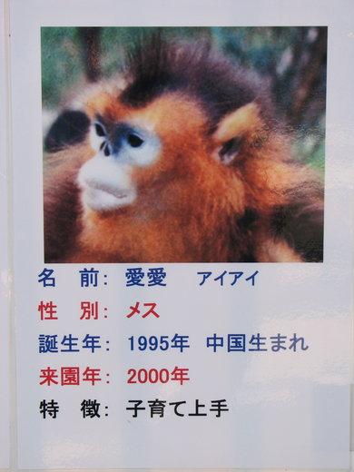 100124_003