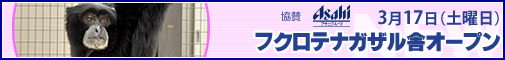 Bn_eve_01