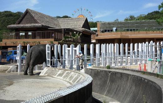 Zoo130717a